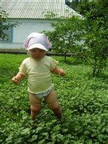 Трава по-колено.