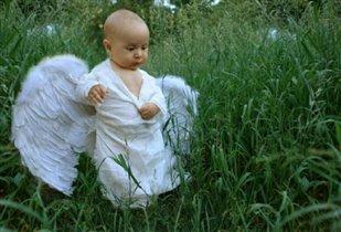 В небе мало места мне, погуляю по земле!!!