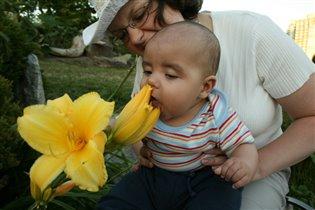 Цветочек-цветочек, я тебя съем!
