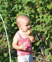 Обожаю ягоды!