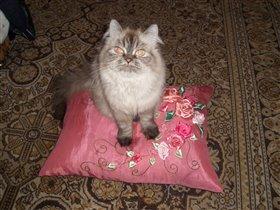 Катюшка на подушке