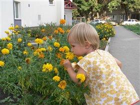 Какой нетипичный запах у этого цветка...