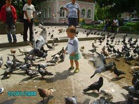 Владя и голуби.