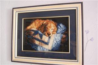 'Спящий щенок' от Dimensions
