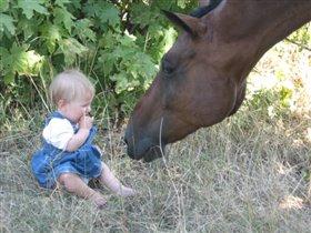 Не ешь меня, лошадка.