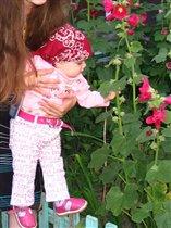 вот он какой цветочек Аленький!!!!