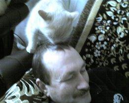 Сделаю причёску хозяину.
