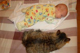 А были мы размером с кошку