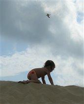 Рожденный ползать - летать не может!:)