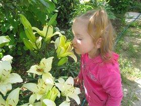 Лучшие цветы у бабушки в саду!