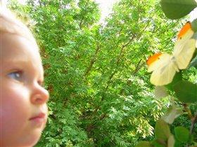 Любопытный натуралист
