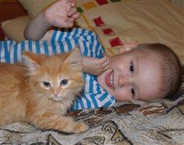Котятки :)