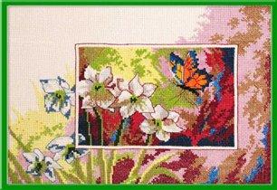 058_нарциссы и бабочка