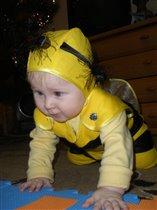 я пчелка, пчелка, пчелка, я вовсе не медведь!