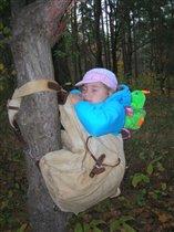 Самый сладкий сон...в рюкзаке и на дереве!