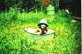 Панамка-моя, а ванночка-еще дедушкина!!!