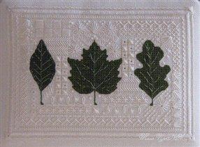 Листья в кружевах