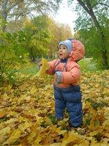 Осень... весело.... класс!
