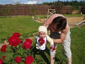 Сажаем цветочки на даче!
