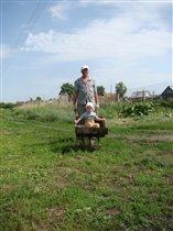 хорошо в деревне летом, покататься с дедом...