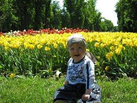 Владимир в парке
