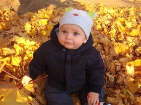 Первая осень. Сижу я в листве, в модном костюме готовлюсь к зиме.