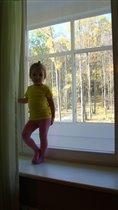 Осень за окном...