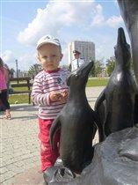 Матвей и пингвины