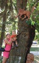 Есть в Анапе добрый кот - он на дереве живёт!!