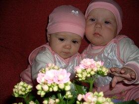 Елизаветта и Екатерина 8 месяцев.