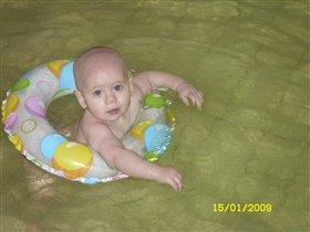 Мой чемпион по плаванию