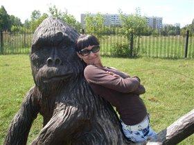 Кто сказал, что у нас не существуют гориллы?