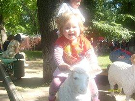 Оседлала я овечку!