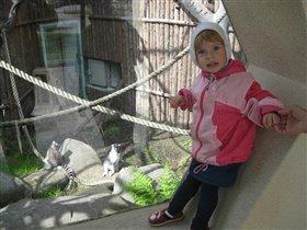 Ярослава в зоопарке