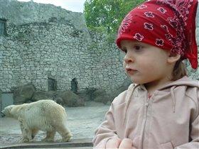 С белым медведем