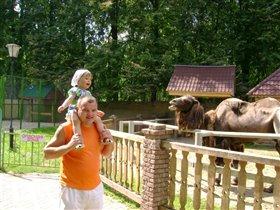 В первый раз в зоопарке.Дочка в восторге от животных!