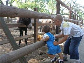 Два брата (Артемка и Максим) в зоопарке!