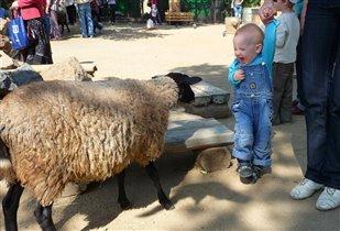 В зоопарке г.Челябинск