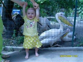 В зоопарке я была с пеликаном сфоткалаяс