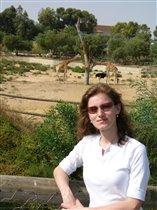 Зоопарк в Тунисе
