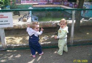 С другом Егоркой в зоопарке,кормим птичек!