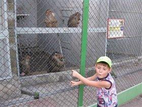 С обезьянкой