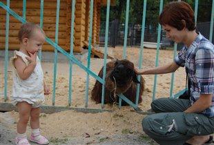 В липецком зоопарке