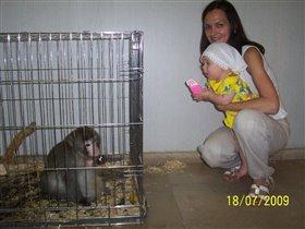 6 месяцев - первый раз в зоопарке