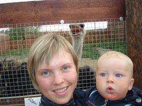 Мамааа...я видел страусааа!!!