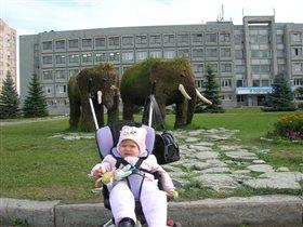 мааааам, ну купи слона...