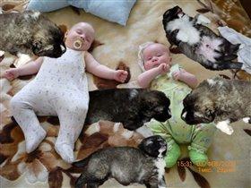 Детки спят