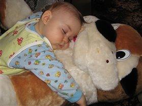 Кровать жесткая,одеяло кусачее,а собака...м-м-м...