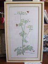 петрушка и пчелы Thea Gouverneur