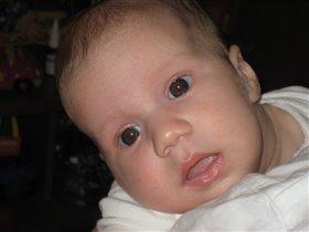 Софи 3 месяца